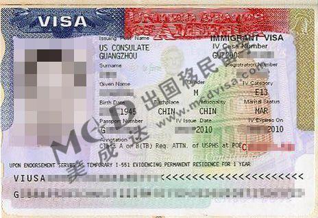 王先生的美国E1签证样本