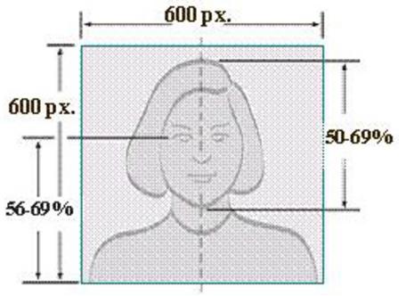 美国签证照片规格示例
